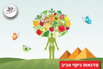 איך לעשות ניקוי אביב עם תזונה בריאה?